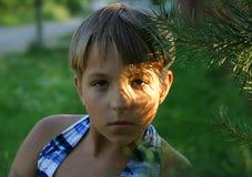 заход солнца портрета стоковые изображения rf