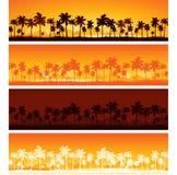 заход солнца предпосылки тропический иллюстрация штока