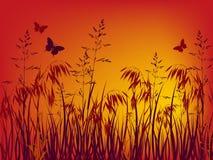 заход солнца предпосылки Иллюстрация вектора