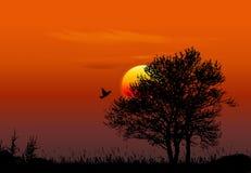 заход солнца предпосылки иллюстрация штока