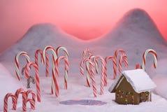 заход солнца пруда пинка пущи рождества тросточки конфеты Стоковое Изображение RF