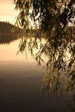 заход солнца пруда Стоковые Изображения