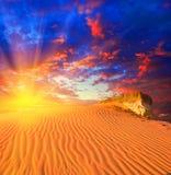заход солнца пустыни драматический Стоковые Изображения