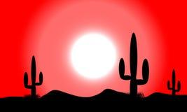 Заход солнца пустыни с заводами кактуса Стоковое фото RF