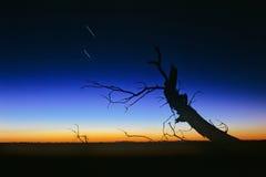 заход солнца пустыни Стоковые Изображения RF