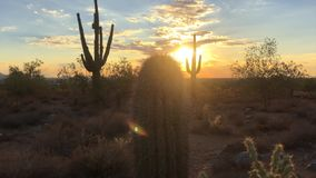 Заход солнца пустыни Scottsdale Аризоны