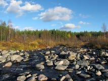 заход солнца пущи ручейка осени Стоковая Фотография