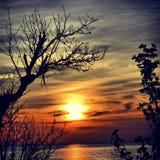 Заход солнца рассвета Стоковая Фотография RF