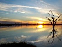 заход солнца реки murray Стоковые Фото