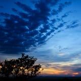 заход солнца саванны Стоковое Фото