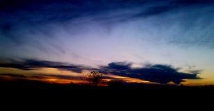 Заход солнца саванны Стоковое Изображение