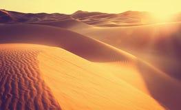 заход солнца Сахары пустыни Марокканськая Африка красивейший песок дюны Стоковое Изображение RF