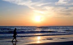 заход солнца силуэта пляжа Стоковое фото RF