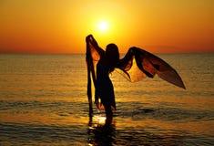 заход солнца силуэта Стоковые Фото