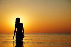 заход солнца силуэта Стоковая Фотография RF