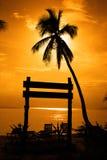 заход солнца силуэта Стоковое Изображение RF