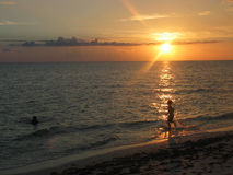 заход солнца силуэта Стоковое Изображение