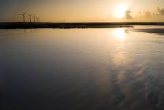 заход солнца силы генератора под ветром Стоковая Фотография RF