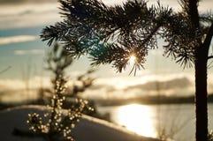 Заход солнца, снег и море стоковые изображения