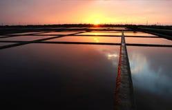 заход солнца соли поля Стоковые Фото