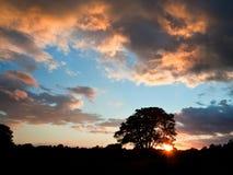 заход солнца солнца sumer силуэта сногсшибательный Стоковая Фотография