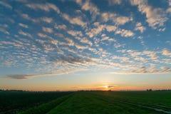 Заход солнца с облаками altocumulus над голландским ландшафтом польдера около гауда стоковая фотография rf