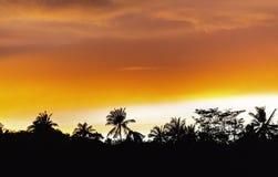 Заход солнца с оранжевыми облаками стоковые фото