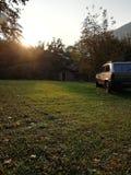 Заход солнца с пандой стоковое изображение rf