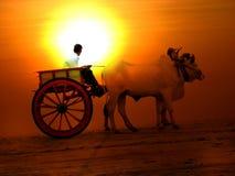 заход солнца тележки Стоковое фото RF