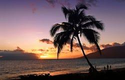 заход солнца тропический Стоковое Изображение RF