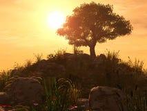 заход солнца холма Стоковые Изображения