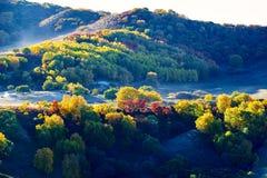 Заход солнца холмов осени Стоковые Изображения