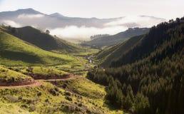 заход солнца холмов туманный Стоковые Фото