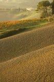 заход солнца холмов Стоковое Изображение RF