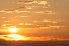 заход солнца Стоковые Фотографии RF