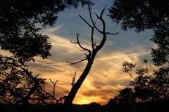 заход солнца 3 Стоковое Изображение