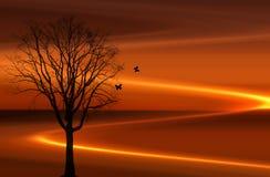 заход солнца beems Стоковая Фотография RF