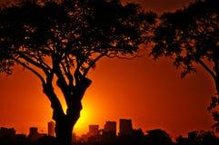 заход солнца buenos aires стоковая фотография