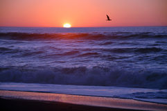 заход солнца california Стоковое Изображение