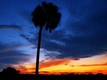 заход солнца florida Стоковое Фото