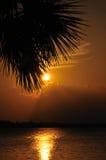 заход солнца florida стоковое изображение rf