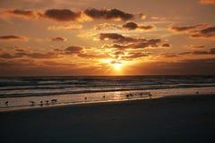 заход солнца florida Стоковые Изображения