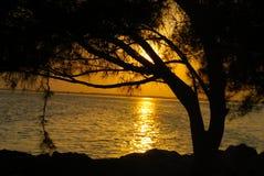 заход солнца florida Стоковая Фотография