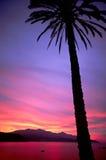 заход солнца forno стоковое изображение rf