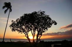 заход солнца lahaina Стоковое фото RF