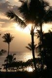 заход солнца maui стоковые фото
