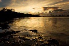 заход солнца miami одичалый Стоковое Изображение