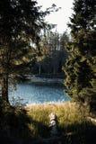 Заход солнца Nationalpark Harz стоковое фото rf