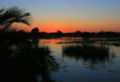 заход солнца okavango стоковая фотография rf