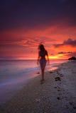 заход солнца pacific пляжа Стоковые Фото